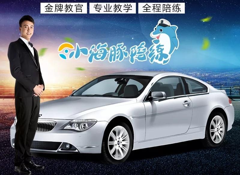 上海陪驾公司_汽车陪练体验-金牌教练 - 上海小海豚汽车陪练/陪驾/汽车服务